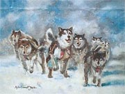 Husky Christmas Cards.Siberian Husky Club Of Great Britain